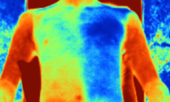 הבד יכול לקרר את הגוף בחמש מעלות צלזיוס. הדמיה תרמית של הבגד החדש | מתוך מאמר המחקר: S. Zeng et al./Science (2021)