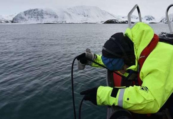 ג'אנה ווינדרן מקליטה קולות תת ימיים בים ברנץ, צפונית לנורווגיה ורוסיה | Courtesy image