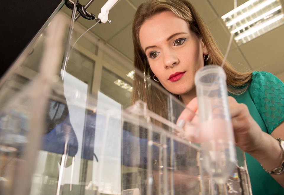 שיטה עם פוטנציאל לטיפול נגד מגוון סוגי סרטן. טלי אילוביץ'   צילום: אוניברסיטת תל אביב