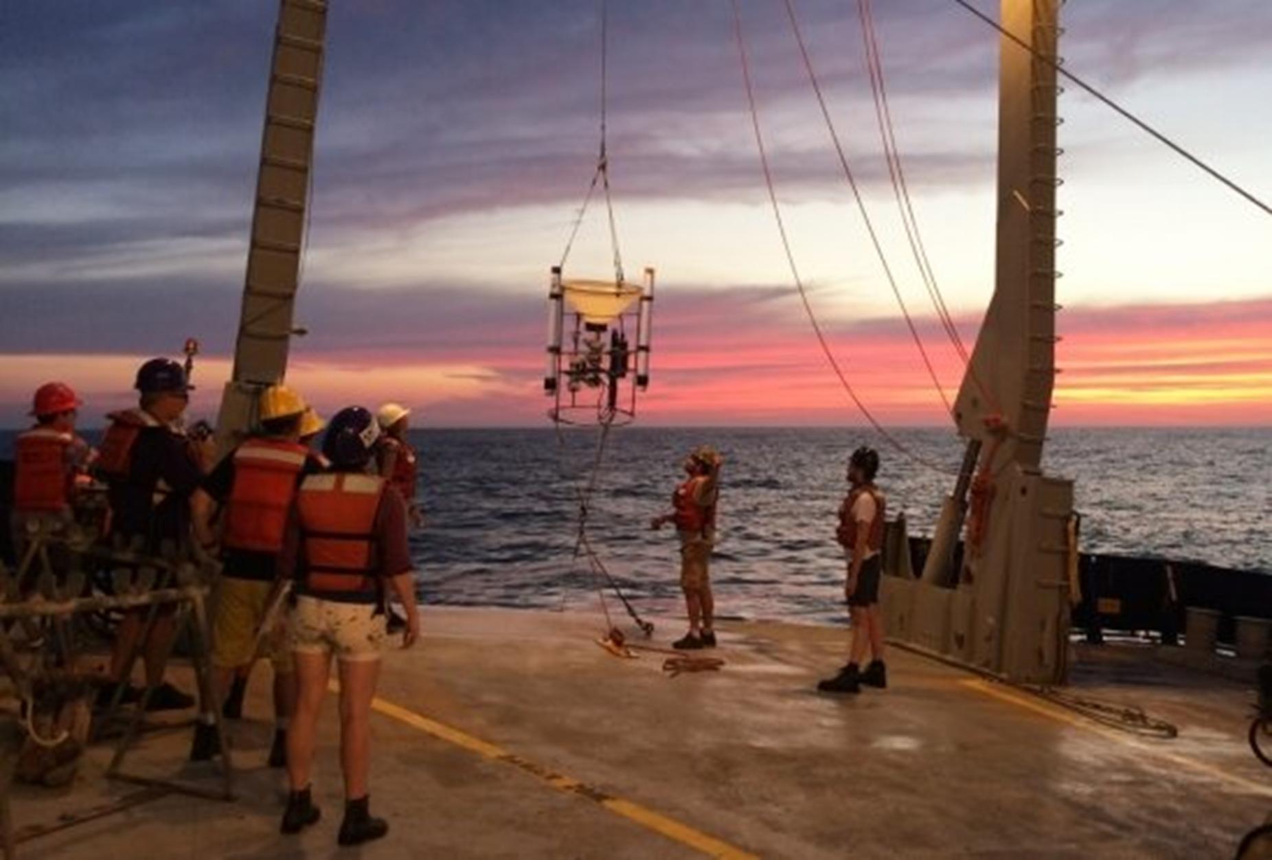 בתמונה: חוקרים אוספים דגימות מהאוקיינוס קרדיט Morgan Raven