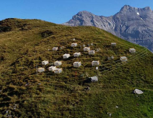 כלובי הרשת במרומי ההרים | P. Descombes