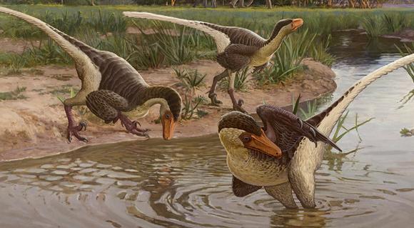דינוזאורים ממשפחת הדְרוֹמֶזַאוּרִיים| איור: Sergey Krasovskiy, University of Pennsylvania