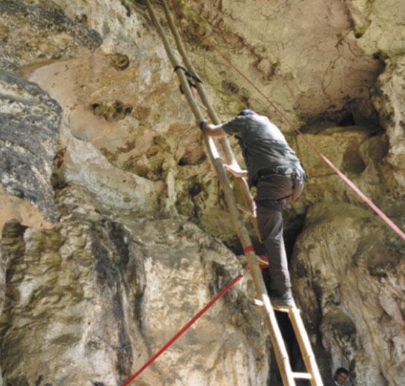 הסולם למערה