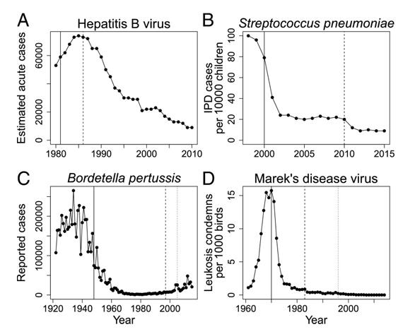 התפוצה בארצות הברית של מחלות שהתגלתה בהן עמידות מסוימת לחיסונים: (A) צהבת נגיפית B; (B) סטרפטוקוק פניאומוניה; (C) שעלת; (D) מחלת מַרק | מקור: מדוע התפתחות העמידות לחיסונים מדאיגה פחות מעמידות לתרופות, סקירה מחקרית, PNAS, 2018