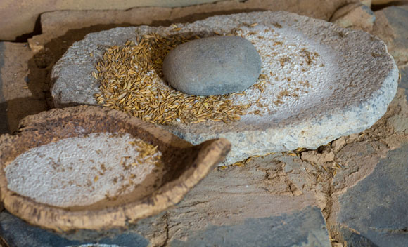 אבן לטחינת שעורה כפי שנעשה בתקופת האבן החדשה, ספרד | צילום: Juan Aunion, SPL