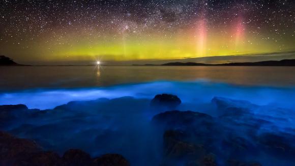 זוהר הקוטב ואורוּת ביולוגית כחלחלה בים | צילום: james_stone76, Shutterstock