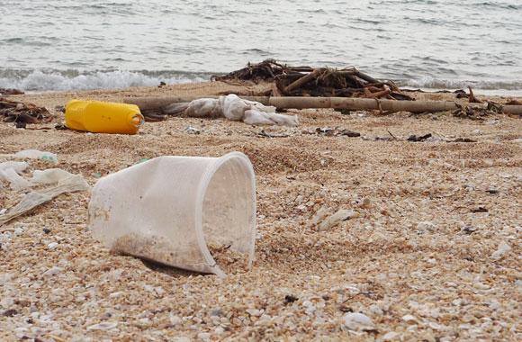 כוס פלסטיק מוטלת על החוף | Shutterstock
