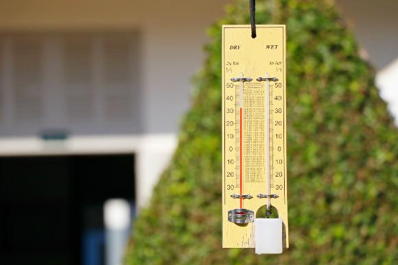 השוואה בין טמפרטורת גולה לחה (מימין) ליבשה | צילום: YONGYUT.TT, Shutterstock