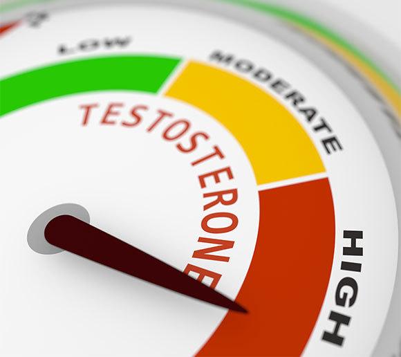 רמות גבוהות של ההורמון | איור: GrAl, Shutterstock