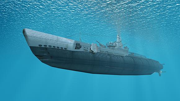איך הורגים תיקנים בצוללת? על ידי קוטל חרקים, דה. צוללת | Shutterstock, tsuneomp