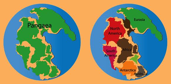 מפה של היבשת הקדומה ומיקומי היבשות הנוכחיות עליה| Shutterstock, Nasky