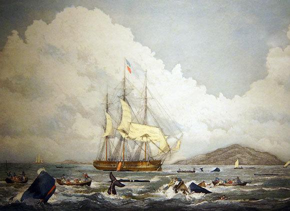 ציור של צייד לווייתני ראשתן מהמאה ה-19 | Shutterstock, steve estvanik