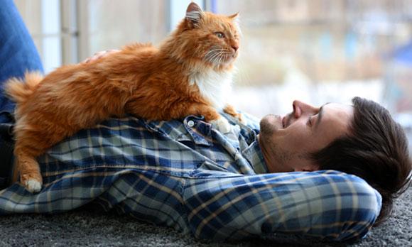 חתול ובעליו | Shutterstock