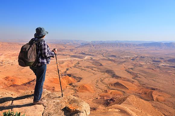 נוף במכתש הגדול בנגב | צילום:  Protasov AN, Shutterstock