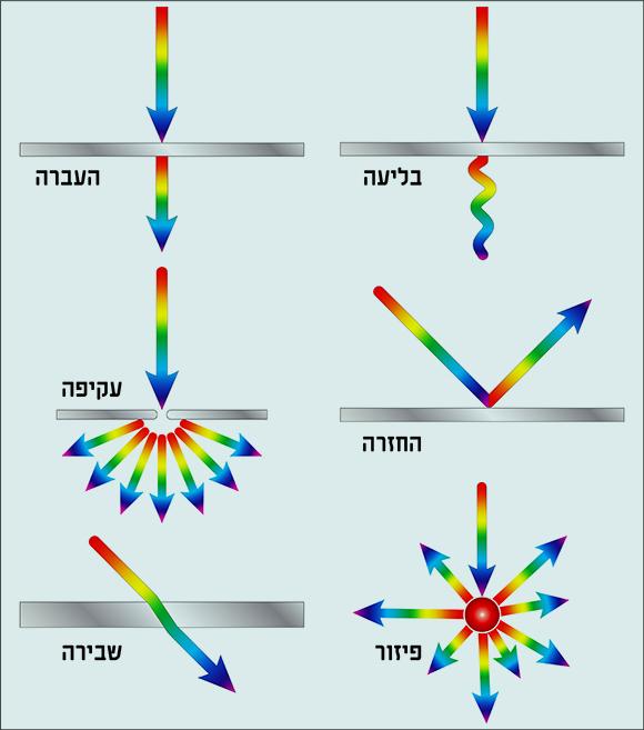 התהליכים שיכולים להתרחש במפגש בין האור למשטח תלויים בעיקר בסוג המשטח | איור: Fouad A. Saad, Shutterstock