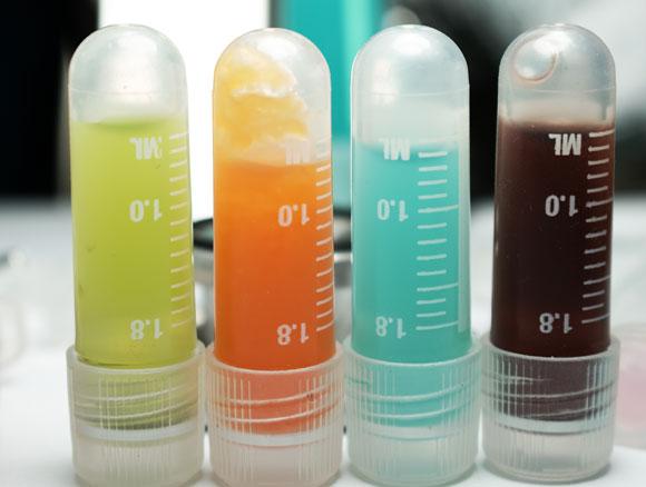 טיפולים אימונתרפיים במבחנה   צילום: Shutterstock