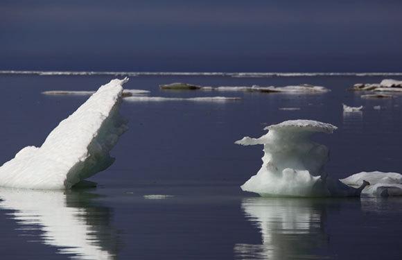 קרח צף בים לאפטב | Shutterstock, Olenyok